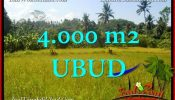 FOR SALE Exotic LAND IN Ubud Gianyar BALI TJUB661