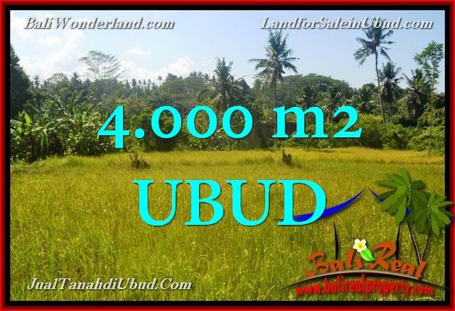 Beautiful PROPERTY Ubud Gianyar 4,000 m2 LAND FOR SALE TJUB661