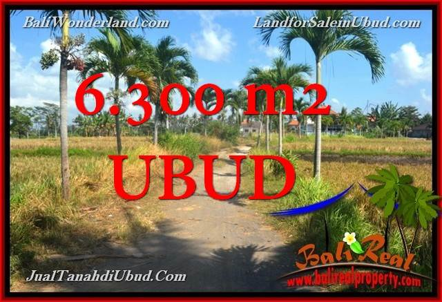 LAND IN UBUD BALI FOR SALE TJUB662