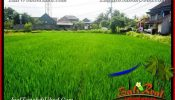 FOR SALE Affordable LAND Near Ubud Center BALI TJUB650