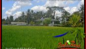 Magnificent PROPERTY LAND IN UBUD BALI FOR SALE TJUB651