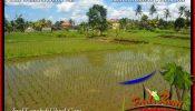 FOR SALE Affordable 4,900 m2 LAND IN UBUD TJUB652