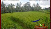 Magnificent LAND IN UBUD FOR SALE TJUB653