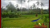 Affordable PROPERTY LAND SALE IN UBUD TJUB655