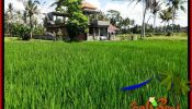 Exotic 3,900 m2 LAND FOR SALE IN UBUD BALI TJUB658