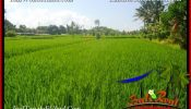Affordable PROPERTY 3,500 m2 LAND SALE IN UBUD BALI TJUB660