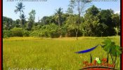 FOR SALE Exotic PROPERTY LAND IN UBUD TJUB661
