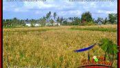 Beautiful PROPERTY LAND SALE IN UBUD TJUB662