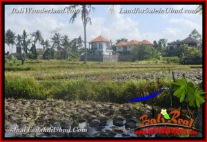 Magnificent PROPERTY LAND FOR SALE IN UBUD BALI TJUB663