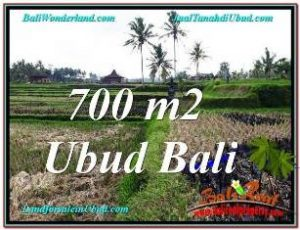 Affordable PROPERTY LAND IN UBUD FOR SALE TJUB666