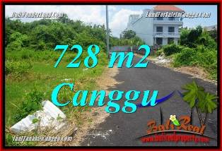 FOR SALE Magnificent PROPERTY 728 m2 LAND IN CANGGU BRAWA TJCG222
