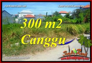 Magnificent 300 m2 LAND SALE IN CANGGU TJCG225