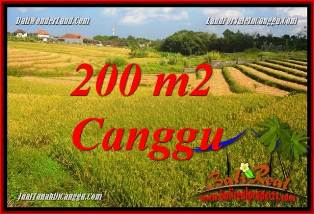 FOR SALE Exotic PROPERTY 200 m2 LAND IN CANGGU TJCG228