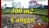Beautiful PROPERTY LAND IN CANGGU FOR SALE TJCG230