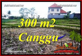 FOR SALE Magnificent 300 m2 LAND IN CANGGU TJCG230