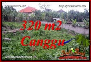 Magnificent PROPERTY 320 m2 LAND FOR SALE IN CANGGU PERERENAN BALI TJCG231