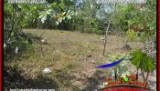 Beautiful 600 m2 LAND SALE IN JIMBARAN PECATU TJJI134