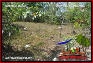 Beautiful 600 m2 LAND SALE IN JIMBARAN PECATU TJJI134