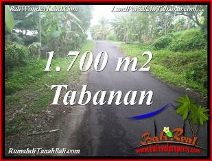 Exotic TABANAN BALI 1,700 m2 LAND FOR SALE TJTB385