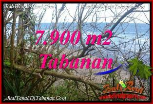Magnificent 7,900 m2 LAND IN TABANAN SELEMADEG Bali FOR SALE TJTB392