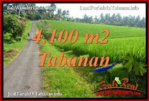 Exotic 4,100 m2 LAND FOR SALE IN TABANAN SELEMADEG TJTB394
