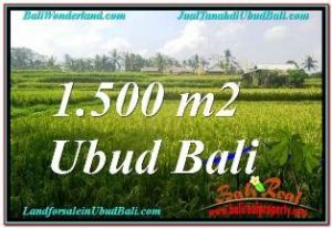 FOR SALE Beautiful 1,500 m2 LAND IN UBUD BALI TJUB667