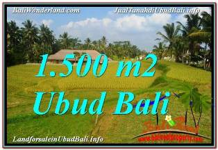 Affordable 1,500 m2 LAND IN UBUD BALI FOR SALE TJUB668