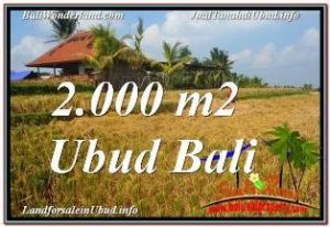 Magnificent PROPERTY 2,000 m2 LAND SALE IN UBUD TEGALALANG TJUB669