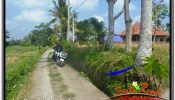 Affordable LAND IN UBUD FOR SALE TJUB669