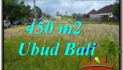 Exotic LAND IN UBUD FOR SALE TJUB671