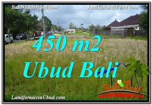 Exotic 450 m2 LAND SALE IN UBUD BALI TJUB671