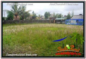 Beautiful LAND FOR SALE IN UBUD BALI TJUB671