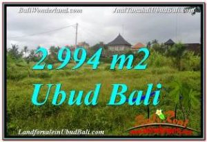 Magnificent 2,994 m2 LAND IN SENTRAL UBUD FOR SALE TJUB672