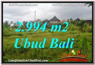 Affordable 2,994 m2 LAND IN UBUD BALI FOR SALE TJUB672