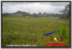 FOR SALE Beautiful 2,994 m2 LAND IN SENTRAL UBUD TJUB672