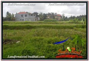 FOR SALE Beautiful 2,994 m2 LAND IN SENTRAL UBUD TJUB672