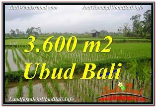 Beautiful PROPERTY 3,600 m2 LAND FOR SALE IN UBUD TEGALALANG BALI TJUB673