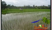 Affordable PROPERTY UBUD BALI LAND FOR SALE TJUB673