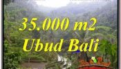 FOR SALE Affordable PROPERTY 35,000 m2 LAND IN UBUD TEGALALANG TJUB674
