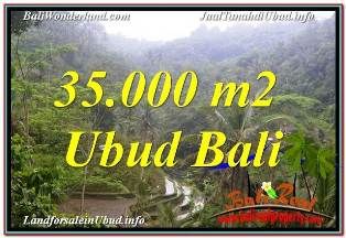 Exotic 35,000 m2 LAND IN UBUD TEGALALANG FOR SALE TJUB674