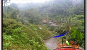 Exotic PROPERTY UBUD TEGALALANG BALI 35,000 m2 LAND FOR SALE TJUB674