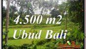 Exotic PROPERTY UBUD BALI LAND FOR SALE TJUB675