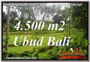 Exotic PROPERTY UBUD BALI LAND FOR SALE TJUB675