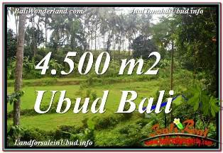 FOR SALE Magnificent PROPERTY 4,500 m2 LAND IN SENTRAL UBUD TJUB675