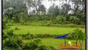 Magnificent PROPERTY LAND FOR SALE IN SENTRAL UBUD TJUB675