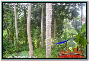 Magnificent PROPERTY LAND FOR SALE IN SENTRAL UBUD TJUB675