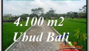 Magnificent PROPERTY SENTRAL UBUD BALI 4,100 m2 LAND FOR SALE TJUB676