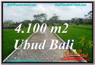 Affordable PROPERTY 4,100 m2 LAND IN SENTRAL UBUD BALI FOR SALE TJUB676