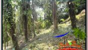 FOR SALE LAND IN UBUD TJUB676