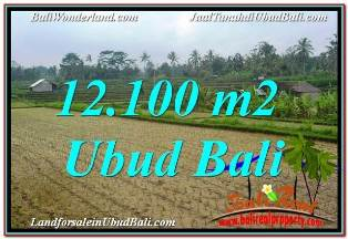 FOR SALE Exotic PROPERTY LAND IN UBUD BALI TJUB677